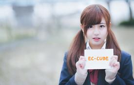 EC-CUBEで新着情報を実装する