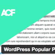 【wordpressプラグインカスタマイズ】Advanced Custom Fieldsプラグインのカスタムフィールドの内容をWordPress Popular Postsに表示させる方法
