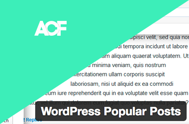 Advanced Custom Fieldsプラグインのカスタムフィールドの内容をWordpress Popular Postsのタイトルリスト中に表示させるには